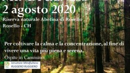 IMG-20200729-WA0006